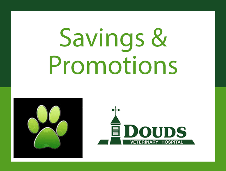 Savings & Promotions